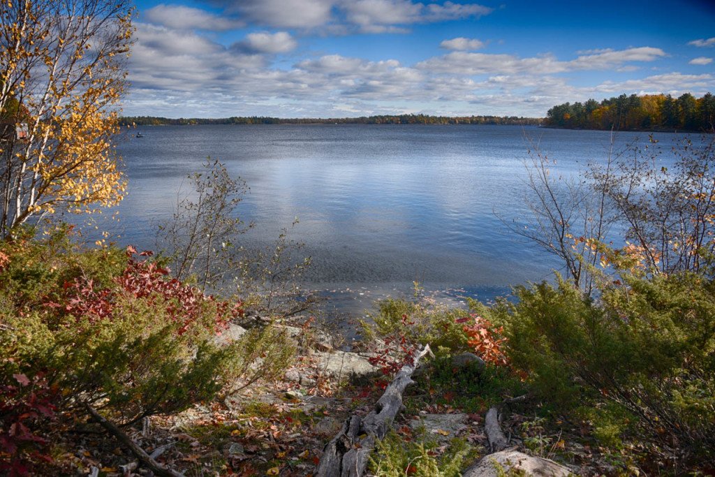 Beautiful Muskoka shoreline and view