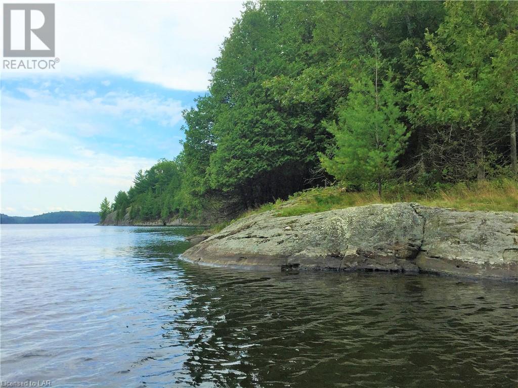 MILL LAKE WATER Lake